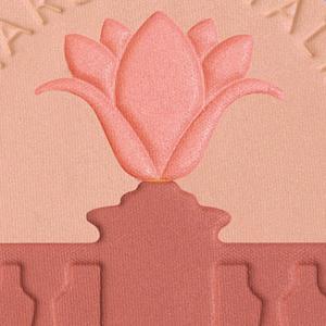 Collistar Blush Eye Shadow Eye Lighter multilíčidlo 10 g, Peach Bouquet