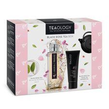 Teaology Black Tea kazeta, EdT 100 ml + SG 250 ml