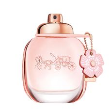 2b34c115e9 Coach - FAnn.sk internetová parfuméria
